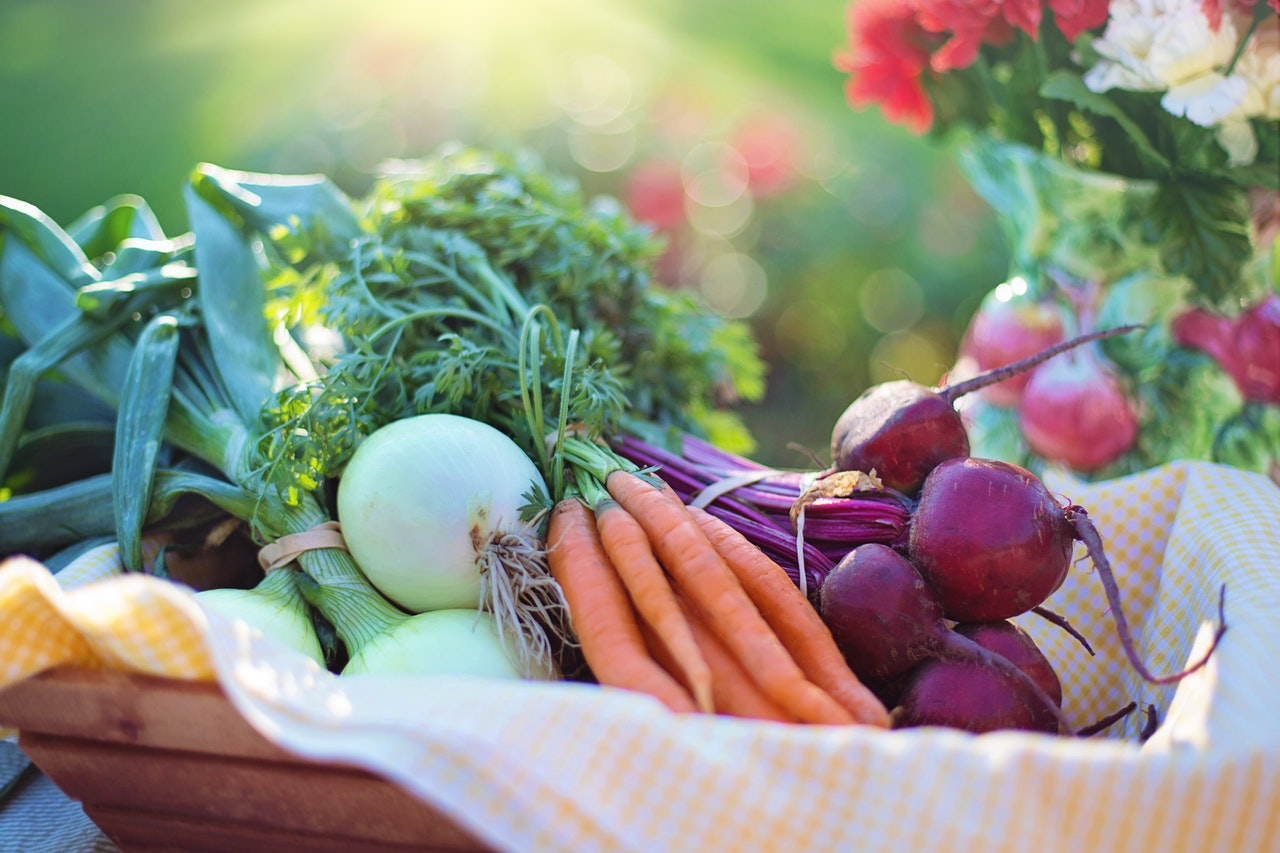 Ekologiska grönsaker utan bekämpningsmedel